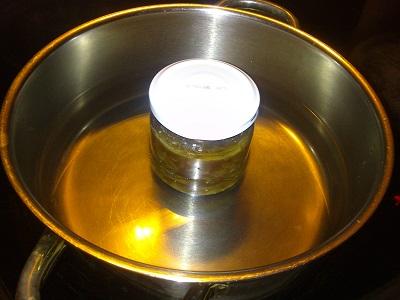 cebolla caramelizada (8)