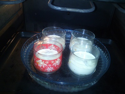 Flan de calabacines (6)