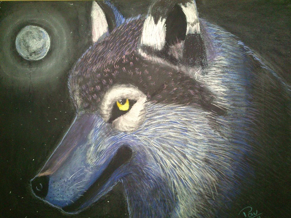 Pintura de Lobo a pastel Enero 2014